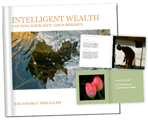 Intelligent Wealth booksleeve